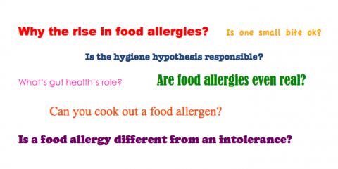 Food Allergies Today: An Expert Q & A