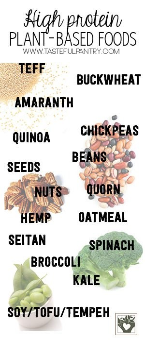 Vegan and Vegetarian Sources of Protein