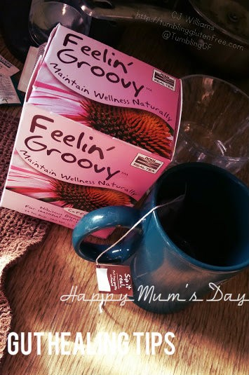 Healing Gifts For Mum's Day, Healing a Leaky Gut