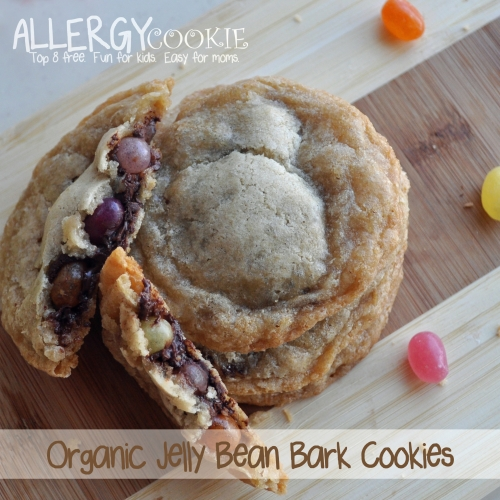 Organic Jelly Bean Bark Cookies