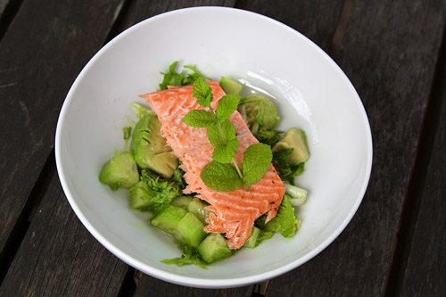 Minty Salmon, Avocado and Cucumber Salad